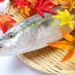 『相葉マナブ』冬の魚目利き!寒ブリ・ヒラメの見分け方&簡単レシピ
