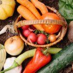 ファイトケミカルでダイエット!ハーバード式野菜スープレシピで血管も若返る!